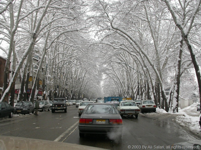 Picture showing Snow in Tehran - Vali-Asr Avenue